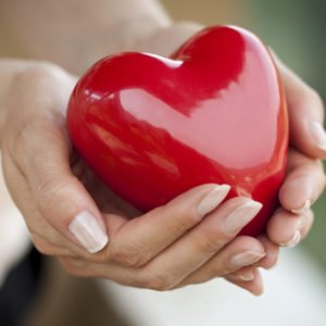 FAQ: How Are Organ Donation and Body Donation Different?