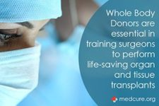 Spotlight: Organ Transplant Training for Surgeons